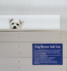 DOG SHOWER PADSTOW LOVAT 054153
